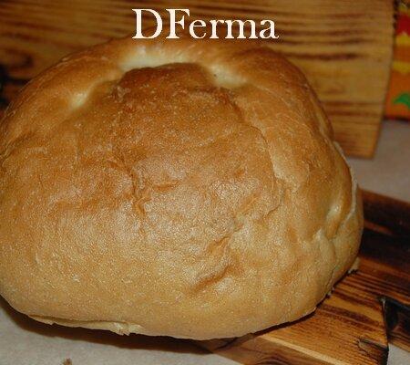Хлеб Австрийский бездрожжевой на виноградной закваске